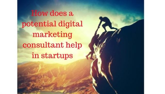 How does a potential digital marketing consultant help