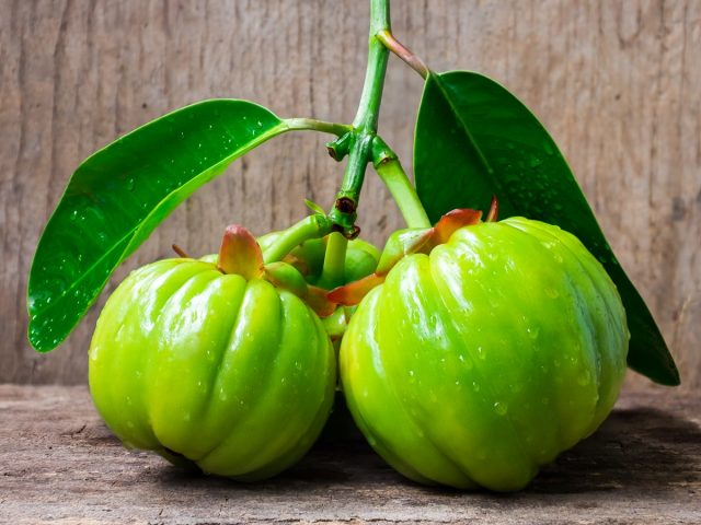 The truth behind dieting pills Garcinia Cambogia Select